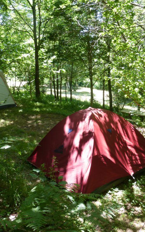 camping_09_tentes sous bois